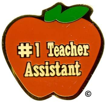 subject pins teacher assistant pins